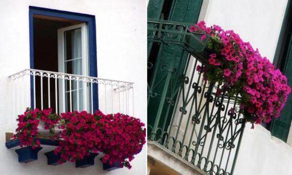 Trang trí ban công ngày tết với hoa 10