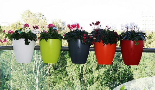 Trang trí ban công ngày tết với hoa 7