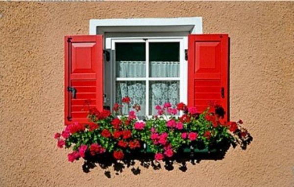 Trang trí ban công ngày tết với hoa 9